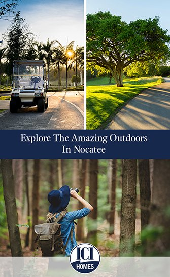 Explore The Amazing Outdoors In Nocatee